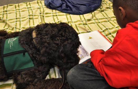 Zeus reading
